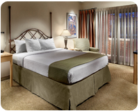 fogelman guest room